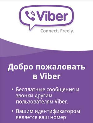 Что такое приложение в русском языке правило - 3